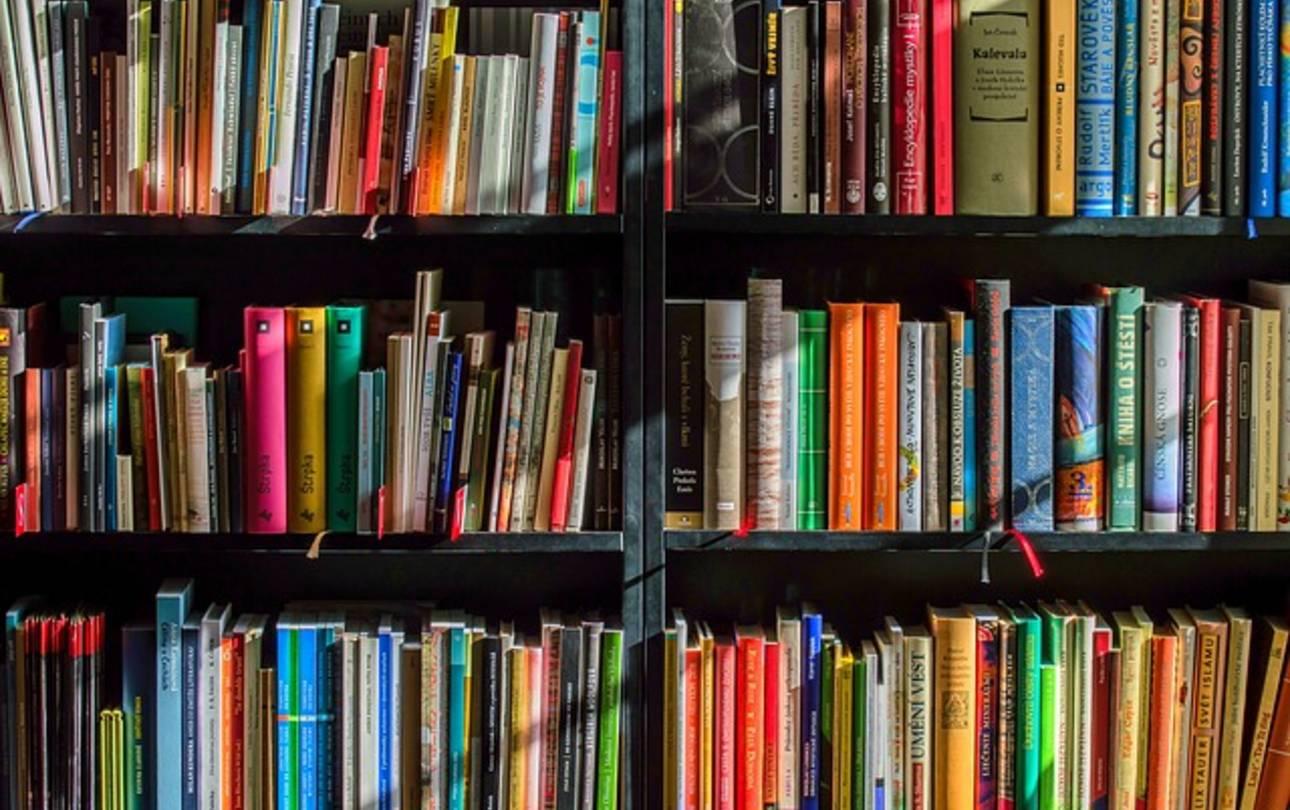 Bücherregal mit vielen Büchern ©LubosHouska, pixabay