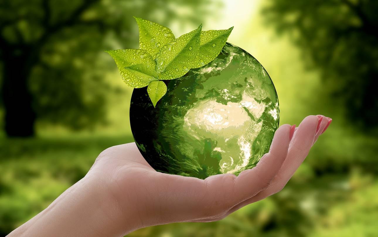 Nachhaltigkeit annca pixabay ©annca pixabay