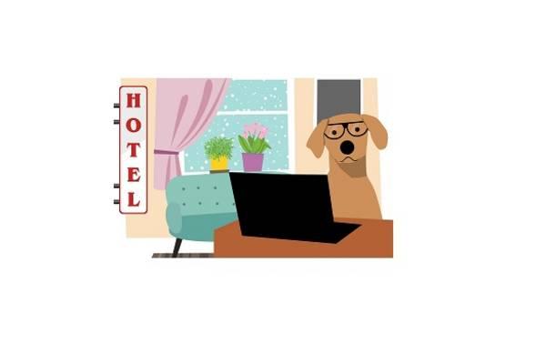 Hotel hund 2 ©Mohammad Hassan_ Pixabay